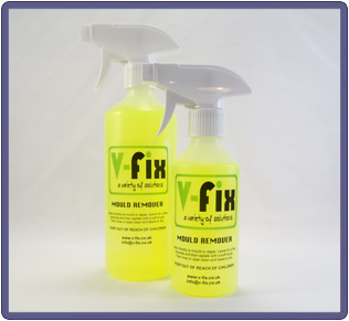 Mould Cleaner